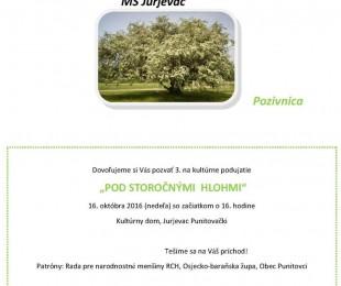 MS Jurjevac: Pod stoljetnim glogovima
